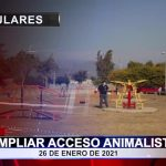 Ampliar acceso animalista
